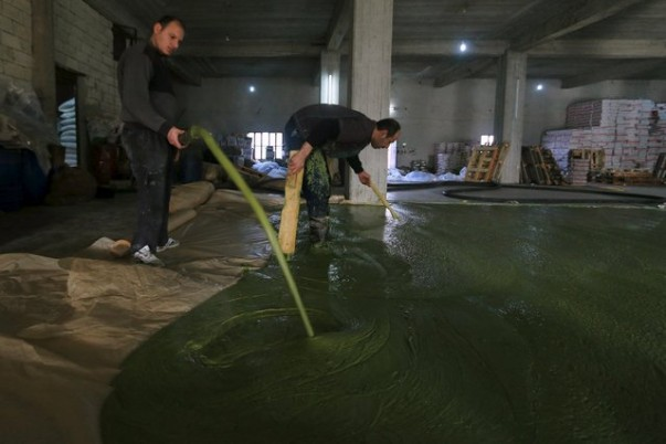 Siria-fabbrica-sapone-olio-oliva-1