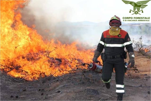 Un agente del Fu Corpo Forestale dello Stato prima della sciagurata riforma Madia in atto di spegnere un incendio