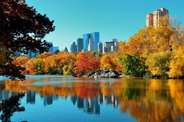 Stati Uniti. New York. Il Central Park
