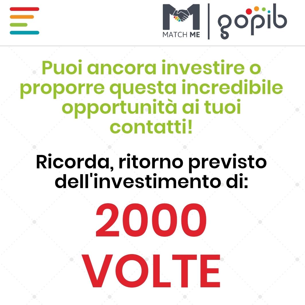 Gopib ROI 2000